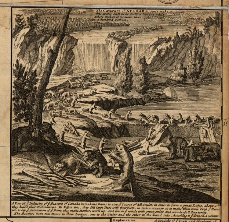 Beavers-Build-a-Dam-Herman-Moll-1732